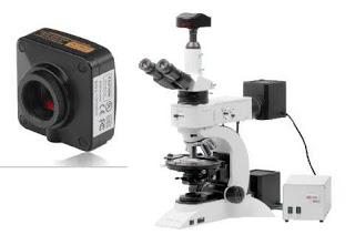 Mikroskop kameraları görüntüleme sistemi